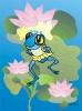 modra-zabka-opr-18x24_1643.jpg